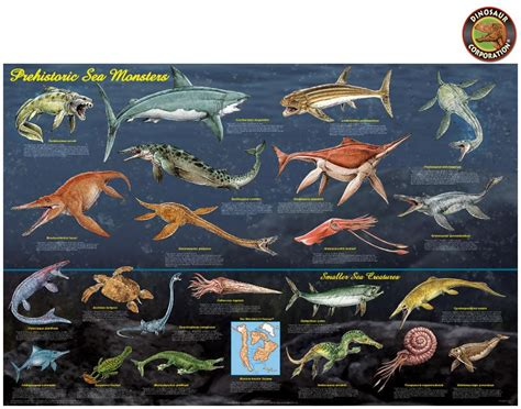 Prehistoric Sea Monsters Marine Reptiles Educational Poster