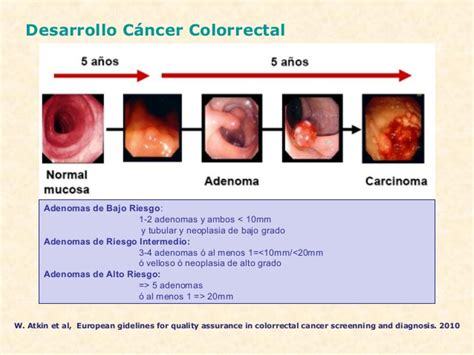 Presentacion Ca Colorrectal