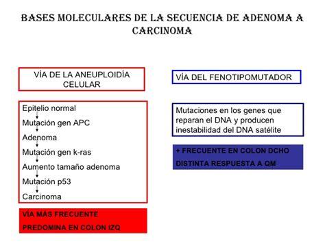 Prevencion cancer colorectal