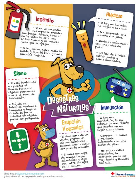Prevenir Puebla | Prevenir es vivir