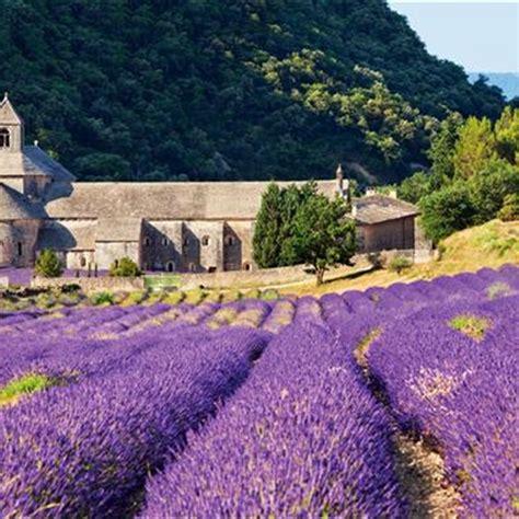 Primavera en Provenza, recorrido desde Aviñón a Aix-en ...