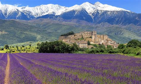 Private Full Day Wine Tour in Provence | Winerist - Winerist