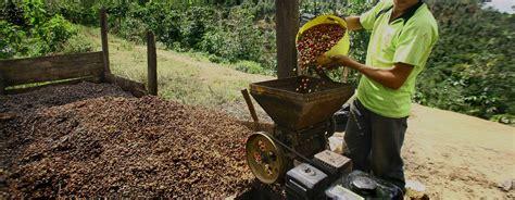 Procesamiento del café en el Perú