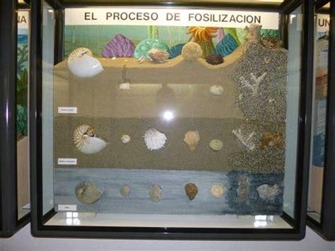 Proceso de Fosilización, SALAS DE LOS INFANTES