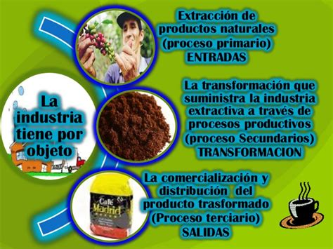 proceso productivo industrial (café)