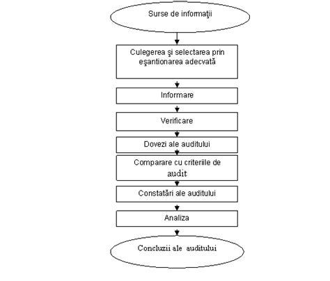 PROCESUL DE AUDITARE (PRELUCRARE DUPA ISO 19011:2002)