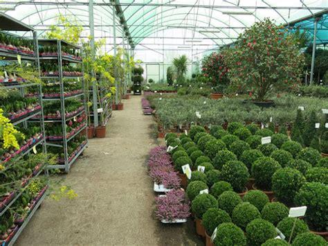 Producción en semillas y plantas en vivero   Cursos online ...