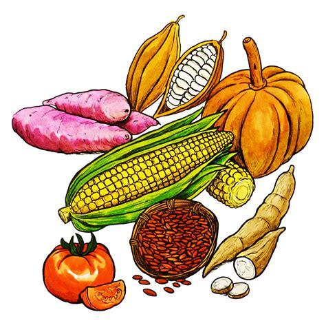 Productos agrícolas mayas - Curriculum Nacional. MINEDUC ...
