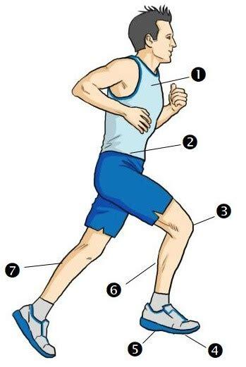 Proper Running Techniques   Correct Running Posture ...