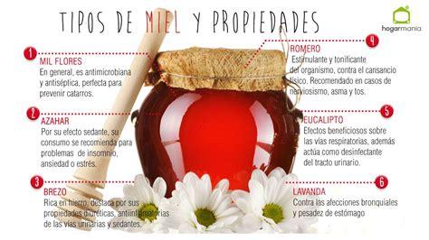 Propiedades de cada tipo de miel   Hogarmania