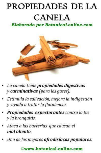 Propiedades de la canela | EJERCICIOS Y SALUD | Pinterest ...