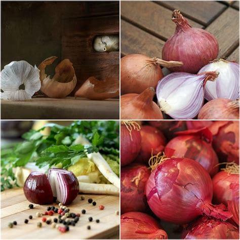 Propiedades de la Cebolla: beneficios de su consumo y cómo ...