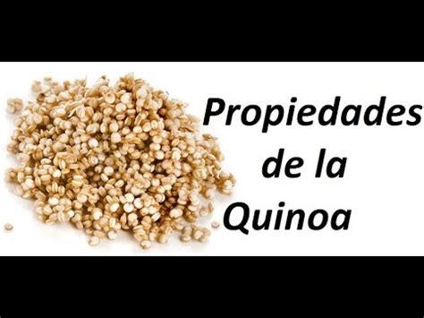 Propiedades de la quinoa o quinua   YouTube