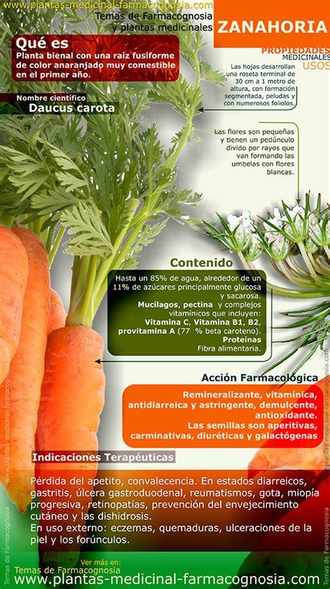 Propiedades de la Zanahoria. Infografía - Farmacognosia ...