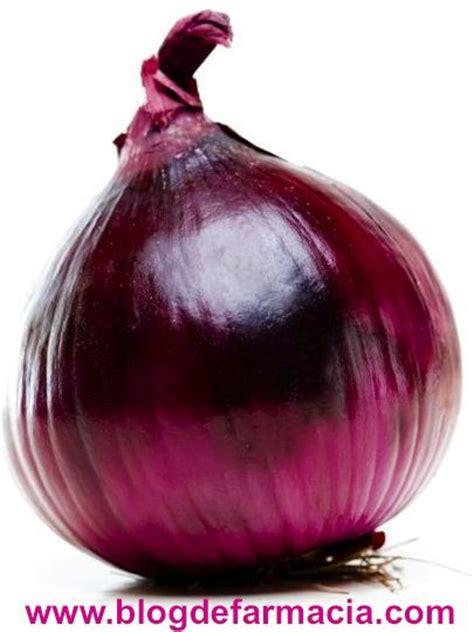 Propiedades medicinales de la cebolla morada | Blog de ...