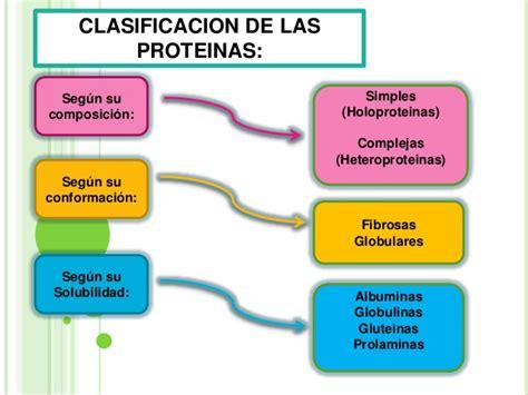 PROTEÍNAS Y AMINOÁCIDOS | Biomoléculas