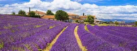 Provence image » Vacances - Arts- Guides Voyages