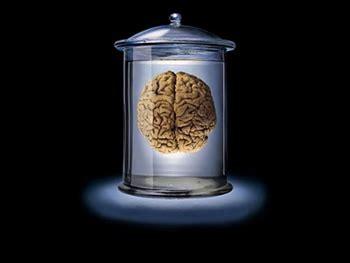 Psicologia Forense Definição - Teoria e Organizacional ...
