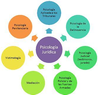 Psicología forense, legal y jurídica | Centre La Gavina