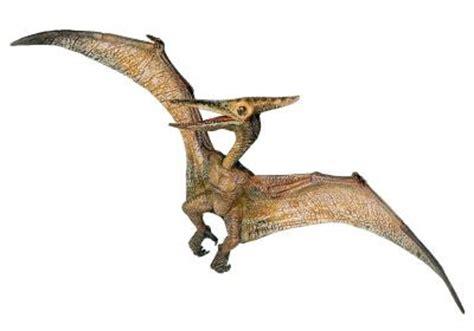 Pterosaurios ~ Naturaleza Insólita