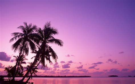 Puesta de sol de color rosa fondos de pantalla | Puesta de ...