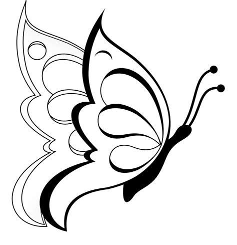 pulgón: mariposas para colorear