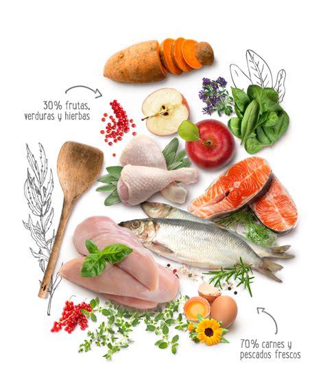 Purizon   Alimentos high premium sin cereales
