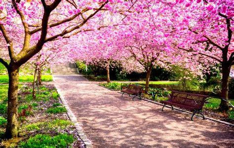 Quando inizia la primavera? Quest anno il 20 marzo