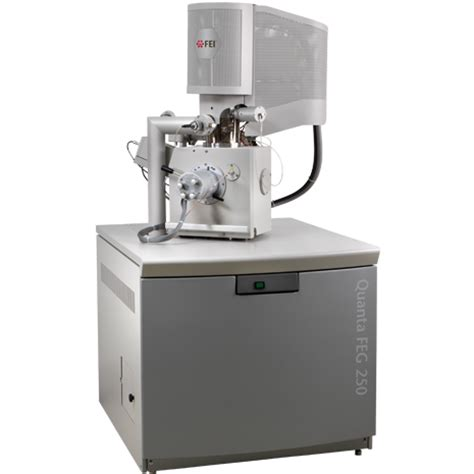 Quanta Scanning Electron Microscope | Thermo Fisher Scientific