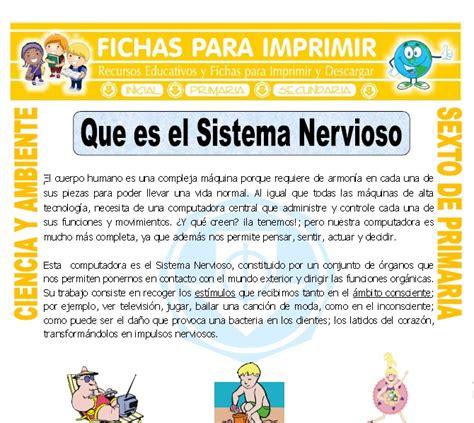 Que es el Sistema Nervioso para Sexto de Primaria   Fichas ...