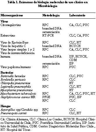 Que Es La Biologia Molecular Pdf
