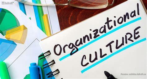 ¿Qué es la cultura organizacional? | Infocif.es
