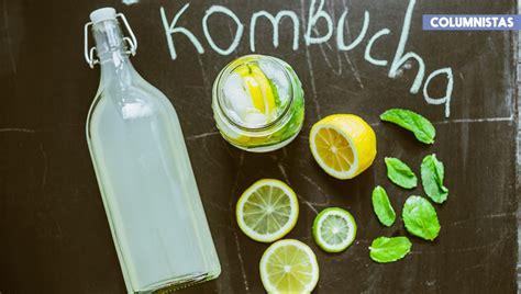 ¿Qué es la Kombucha y cuáles son sus beneficios?   RevistaMoi