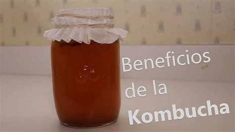 Qué es la Kombucha y el Kéfir. Beneficios en el deporte