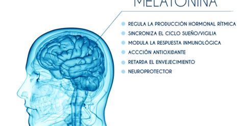 qué es la melatonina   Ejercicios En Casa