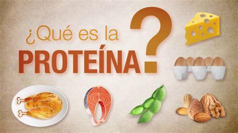 ¿Qué es la proteína?   YouTube