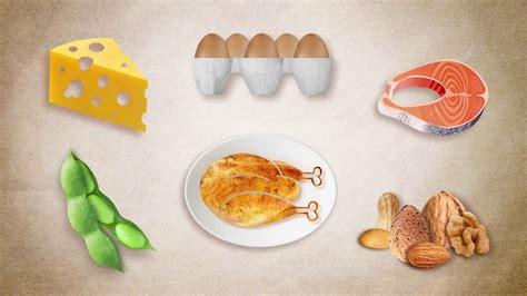 ¿Qué es proteína?   YouTube