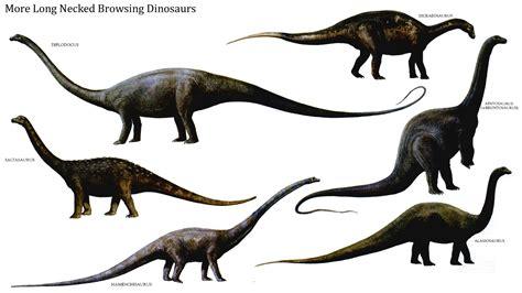 ¿Qué es un dinosaurio y qué no lo es? – Ciencia de Sofá
