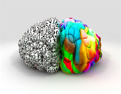¿Qué estudia la psicología experimental?   BLOG | UTEL