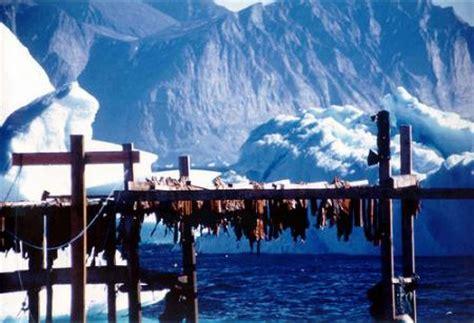 que hacer en groenlandia | Groenlandia Por Descubrir