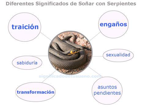 Qué significa soñar con serpientes – Los significados de ...