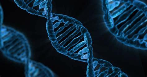 ¿Qué son las biomoléculas? - Generalidades