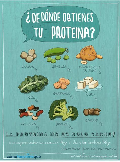 ¿Qué son las proteínas y cuáles son sus funciones?
