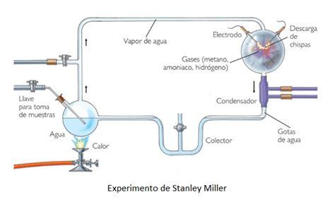 Química 5to Año.: Biomoléculas: definición, origen ...