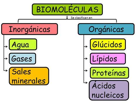 Química y Algo Más!: Las Biomoléculas y el ADN