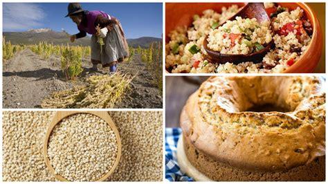 Quinoa - Sus Propiedades, Beneficios y Preparación ...