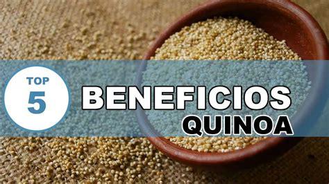 Quinoa : Todos los beneficios y Propiedades de la Quinoa ...