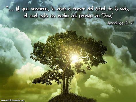Rafael Valiente Ortiz - Todo a cambio de nada: El árbol de ...