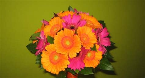 Ramos de Flores   Allium Floristas