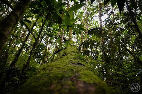 Razones para visitar Costa Rica   Vivir para Viajar